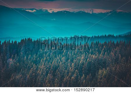 Fantastic mountain peaks and forest under morning blue sky. Dramatic scenery. Carpathian, Ukraine, Europe. Beauty world