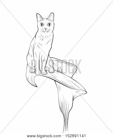 Cat on flower concept. Hand Draw Vector Illustration. Isolated On White Background