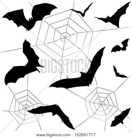 Halloween pattern. Bat and spider's web on white background. Black and white color. Vector Illustration.