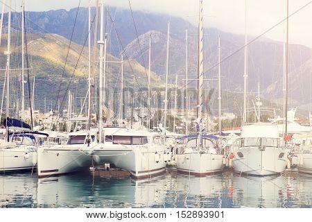 White Yachts Docked In Marina