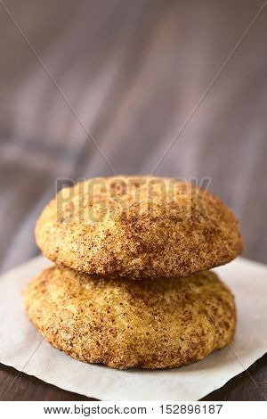Homemade snickerdoodle cookies with cinnamon and sugar coating photographed with natural light (Selective Focus Focus on the front of both cookies)