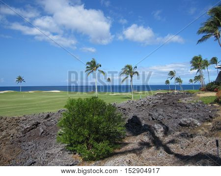 Beatiful golf course with lava at a Big Island resort