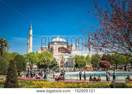 ISTANBUL, TURKEY - APRIL 16, 2015: Hagia Sophia Mosque in spring. Hagia Sophia museum, Istanbul, Turkey. Aya Sofia mosque exterior in Istanbul, Turkey.