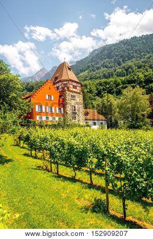 Vaduz, Liechtenstein - July 01, 2016: Famous red house with wineyard owned by the Rheinberger family in Vaduz city, Liechtenstein. This house is very popular tourist attraction in Liechtenstein