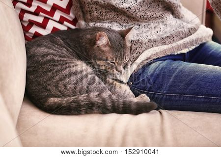 Woman with grey tabby cat sitting on sofa, close up view
