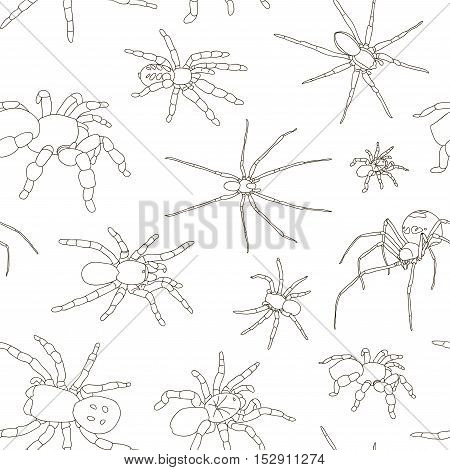 Spiders vector set pattern on white background