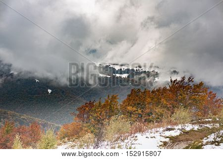 The slope with snow and beautiful, colorful autumn trees on background of a mountain range and storm clouds.