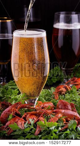 Glasses of dark and light beer with crawfish.