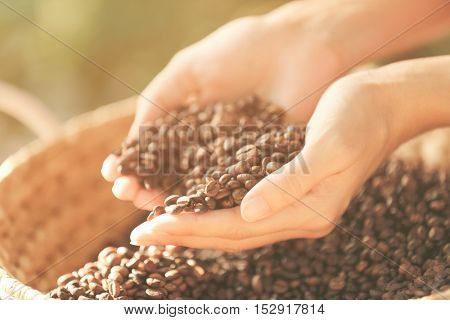 Female hands with roasted coffee beans, closeup