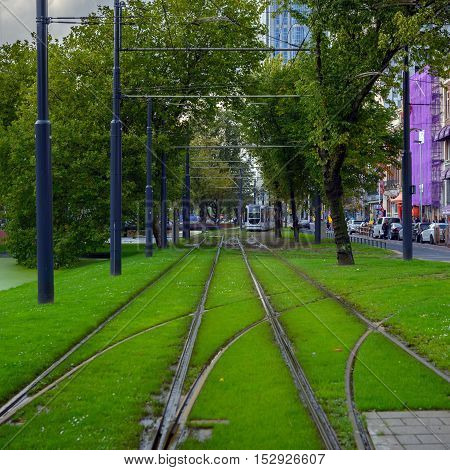 Railroad covered in grass in Rotterdam city center