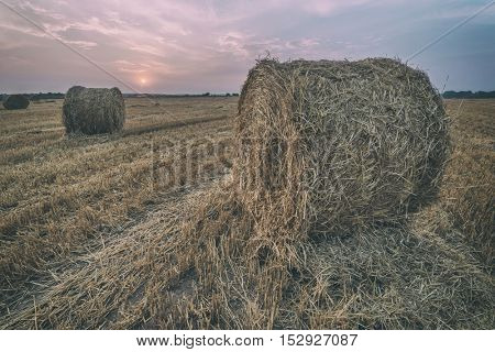 Amazing rural scene on autumn field with straw roles and dramatic evening light. Toned like Instagram filter