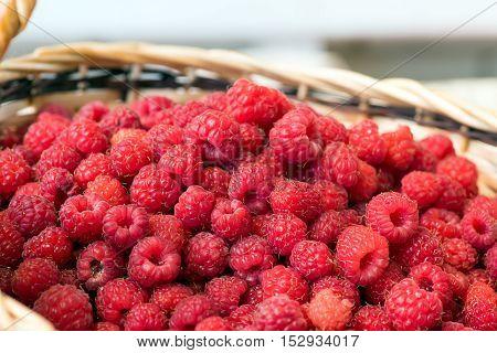 Organic Ripe Raspberries