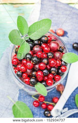 Nutritious Morning Meal Muesli Fresh Fruit