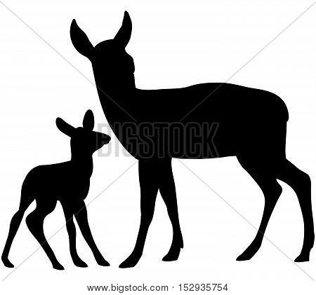 Vector black woodland elegant deers silhouette   set