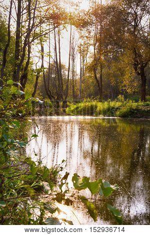 Beautiful warm autumn landscape the wilderness,pond, swamp
