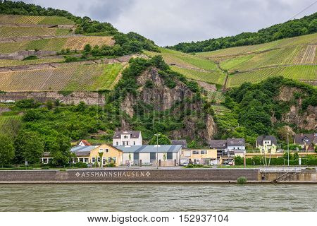Assmannshausen Germany - May 23 2016: Vineyards in the Assmannshausen village on the Rhine river in cloudy weather Hesse Germany.