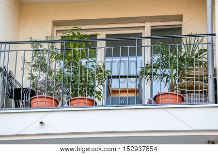 front view on Traditional European Balcony with green plants