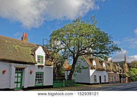 Idyllic thatched cottages in a UK market town