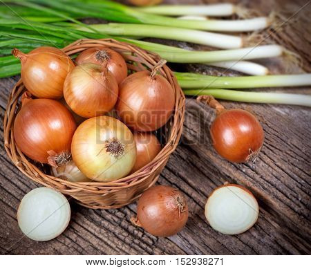 Fresh organic onion and spring onion on table