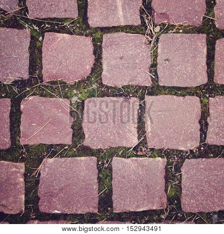 Old pavement with pink colored stones and moss growing through. Aged photo. Close up. Abstract background. Pavement tiles in pink stone.