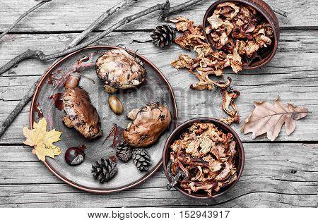 Harvest Of Autumn Mushrooms