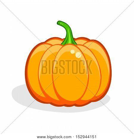 Pumpkin. Harvest Thanksgiving vector illustration isolated on white. Natural, organic Vegetables. Health Vegan food. Autumn, halloween symbol