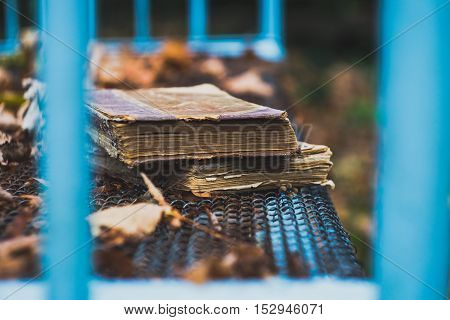 Old books on iron beds in the autumn garden