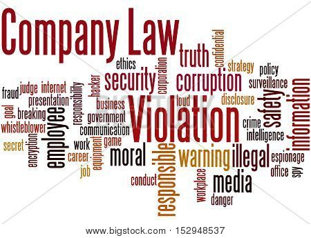 Company Law Violation, Word Cloud Concept 9