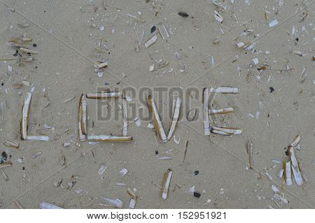 Love written in the sand with seashels
