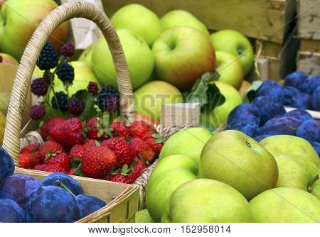 Autumn harvest concept. Ripe organic fruits and berries.Apples,plums,strawberries,blackberries.