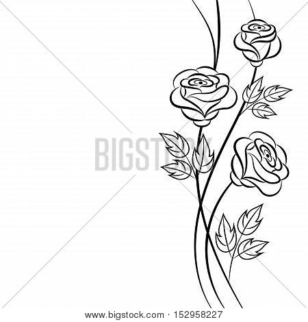 Simple floral background in black and white colors with place for your text.