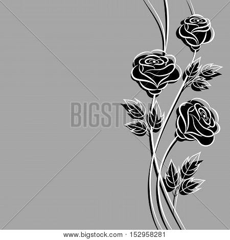 Beautiful bouquet of black roses on gray background.