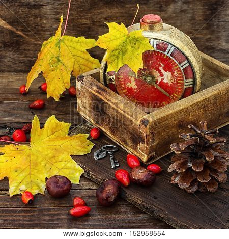 Retro alarm clock in a wooden box in the background dotted with maple autumn leaves