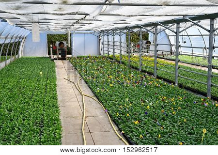 Les Mureaux France - october 5 2016 : the greenhouse