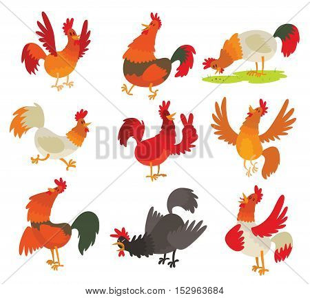 Cute cartoon rooster cock character illustration. Cartoon rooster isolated on background. New Year 2017 symbol rooster, cock farm bird. cock farm animal. Cute rooster vector illustration. Cock
