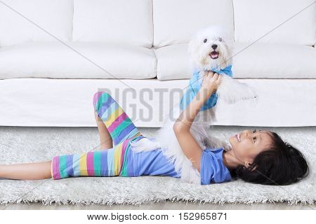 Happy girl lying on the carpet while holding a maltese dog in the living room