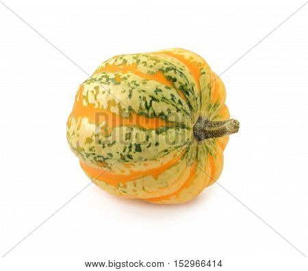 Green And Yellow Striped Festival Squash