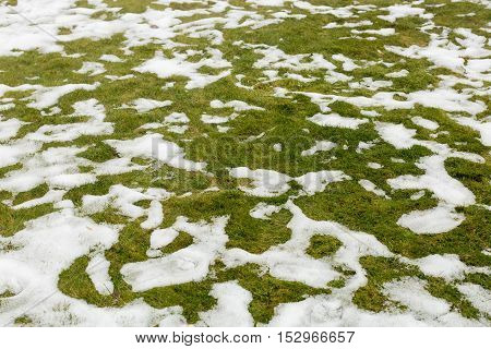 Snow on a grass. Spring in mountains.