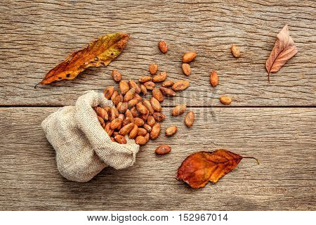 Cocoa Bean In Hemp Sack On The Wooden Background