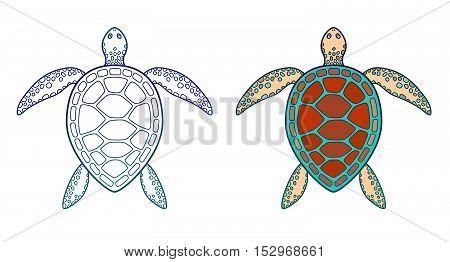 Sea turtle. Vector illustration isolated on white.