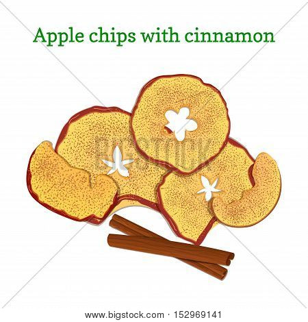 Vector illustration of apples dried fruits. Slices of apple chips baked delicious fruits isprinkled with ground cinnamon, cinnamon sticks For design of packaging cereals breakfast healthy food