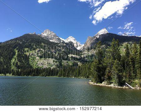 Crisp Mountain Lake on a Lovely Summer Day