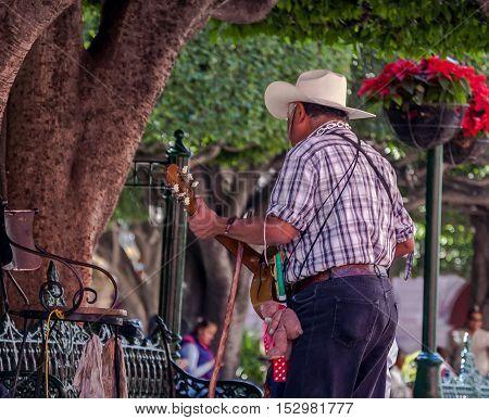 Man Singing to Tree in San Miguel de Allende