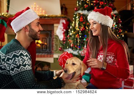 Happy couple with dog for Christmas in decorated home