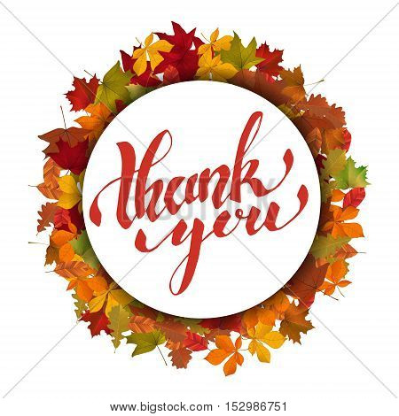 Thank You. Hand drawn lettering on light background with yellow autumn leaves. Vector illustration.