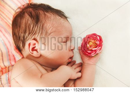 The Cute Newborn Baby Girl with Small Touching Hand and Rose.