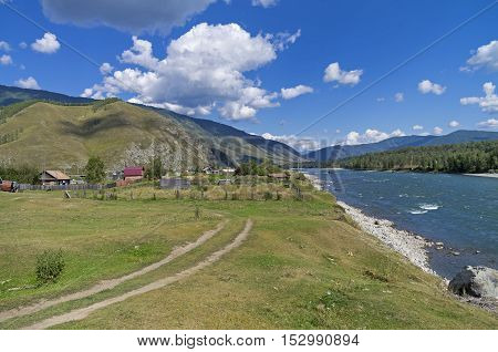 Outskirts of the Tungur village on the bank of the Katun river. Altai Russia. Sunny summer day.