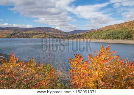 Fall foliage in peak on a bright and cloudy day overlooking reservoir in Catskill mountains, New York