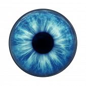 stock photo of blue eyes  - An image of a blue eye ball glass - JPG