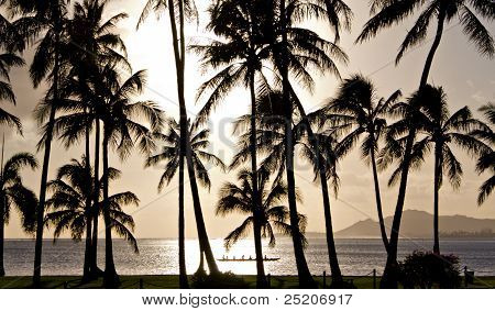 Diamond Head and outrigger canoe framed by palms